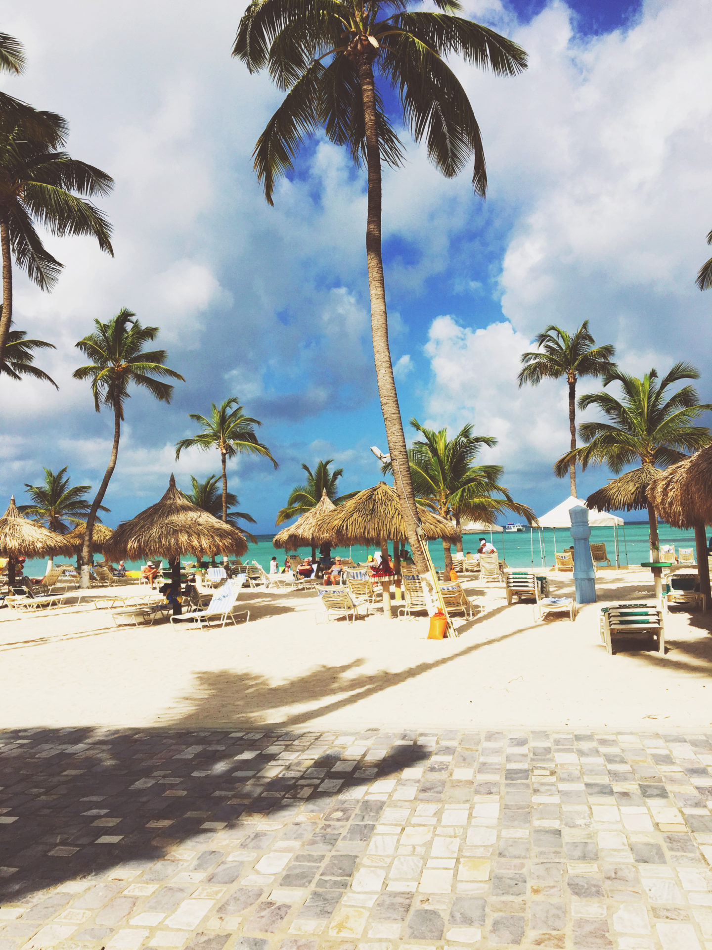 Holiday Inn-Aruba-Palm Beach-Palm Trees
