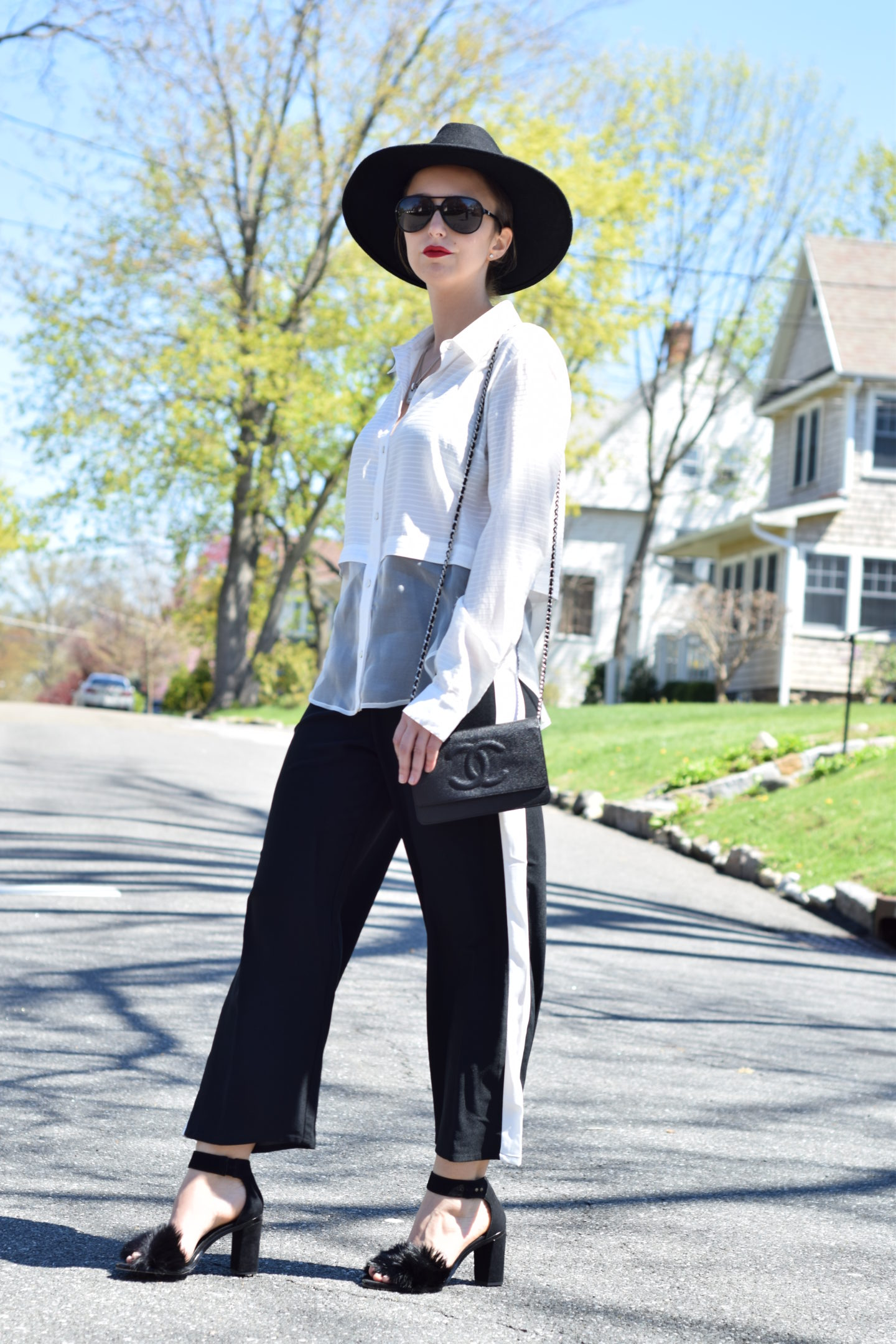 elizabeth and james-half sheer blouse-street style
