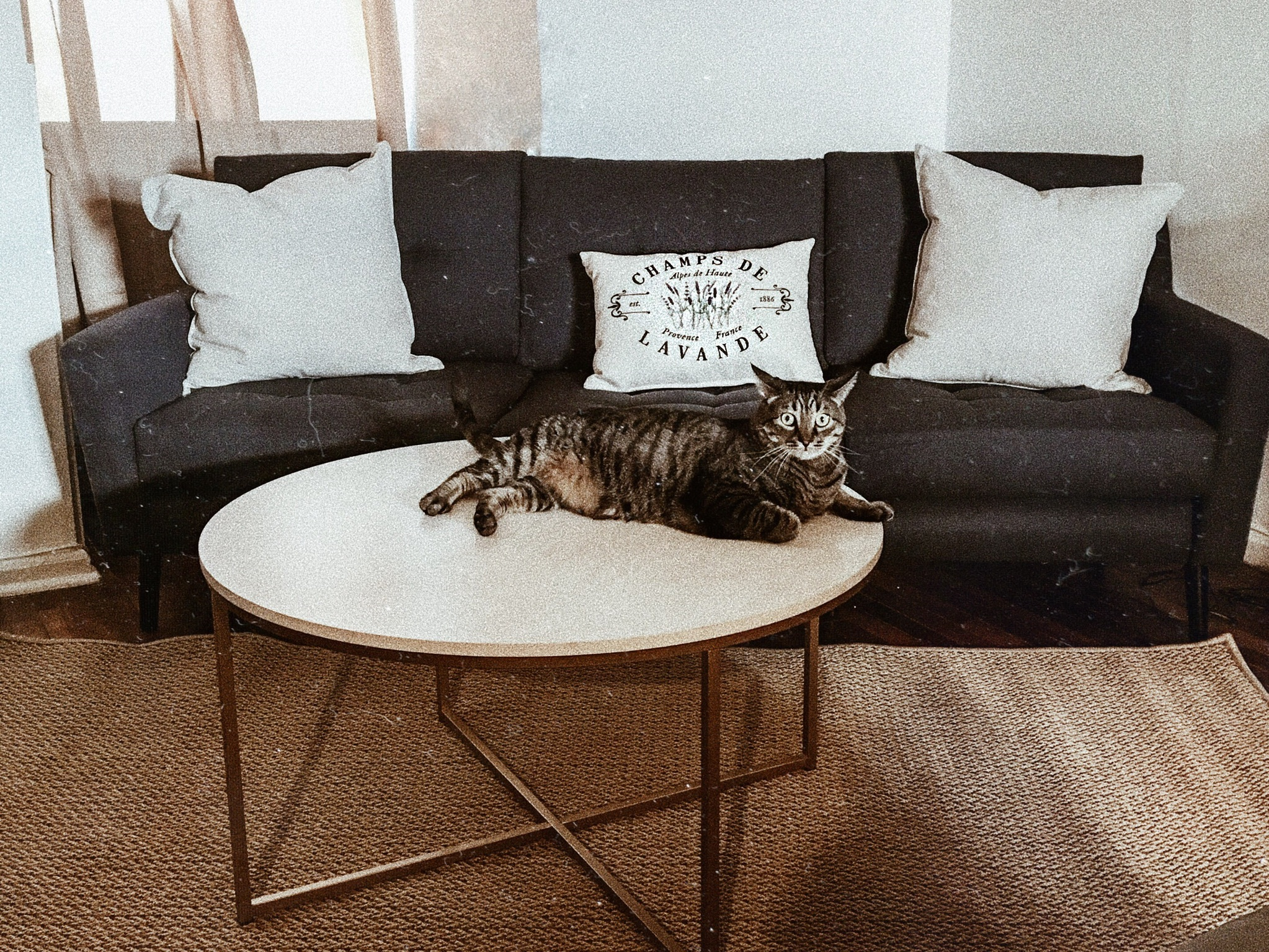 Burrow New Couch Coffee Table Interior Design Pillows